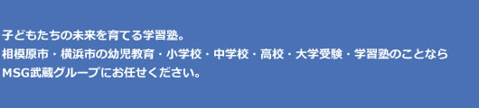 子どもたちの未来を育てる学習塾。相模原市・横浜市の幼児教育・小学校・中学校・高校・大学受験・学習塾のことならMSG武蔵グループにお任せください。